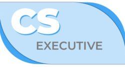 cs executive